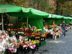 Flowers stalls on Rynek Staromiejski (Old City Market Square)